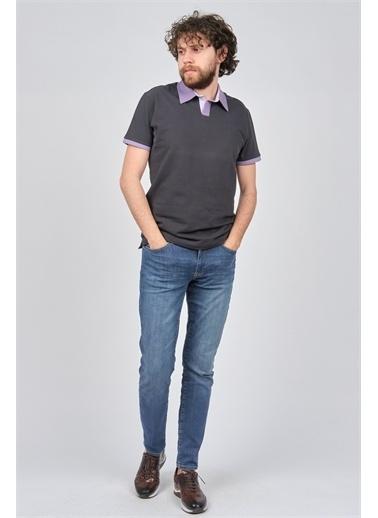 Arslanlı Arslanlı Erkek Polo Yaka T-Shirt  Füme